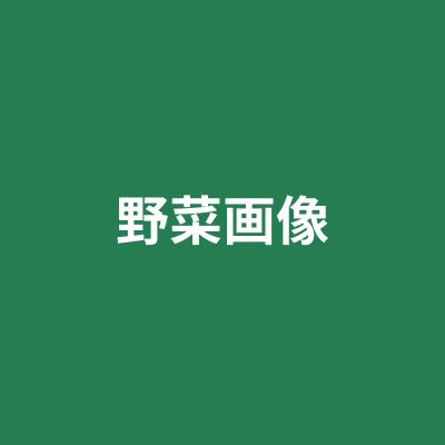 エンジョイニング中村